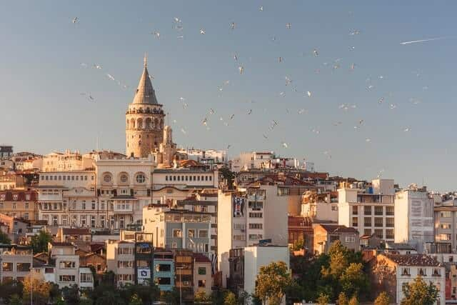 city of Istanbul rising up the hill with the rounded Galata Tower standing tall at the top with multiple birds in the sky in the foreground