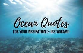 Link Tile: Ocean Quotes for your Inspiration and Instagram
