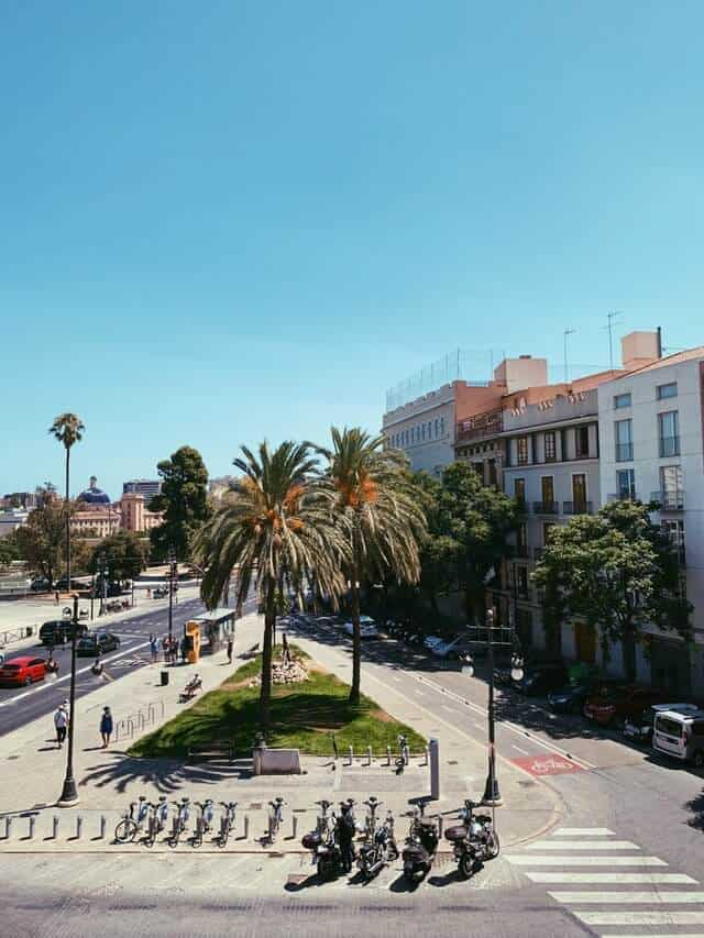 Street scene in Valencia featuring buildings next to a road with a traingle of green glass with two palm trees at the center of the image, bordered by push bikes for hire