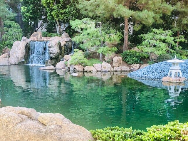 Peaceful Japanese Friendship Garden in Phoenix Az