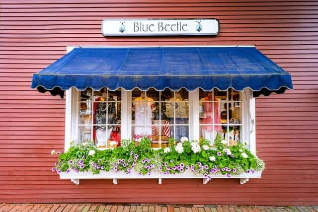 Blue Beetle Nantucket