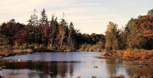 Calvin Ecosystem Preserve & Native Gardens