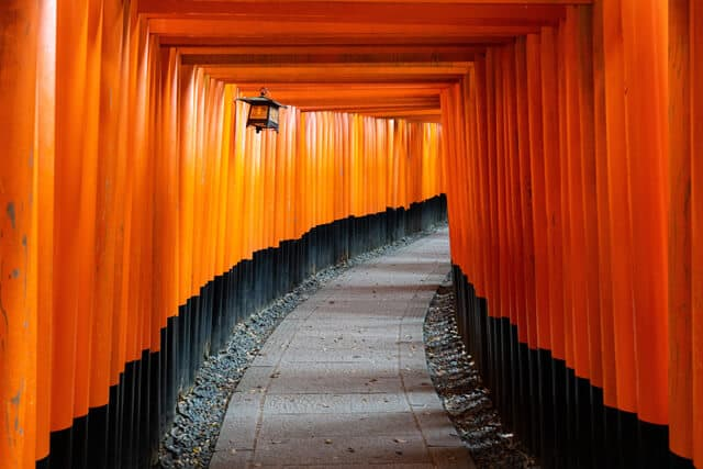 Red tori gates lined up above a path at Fushimi Inari Taisha shrine