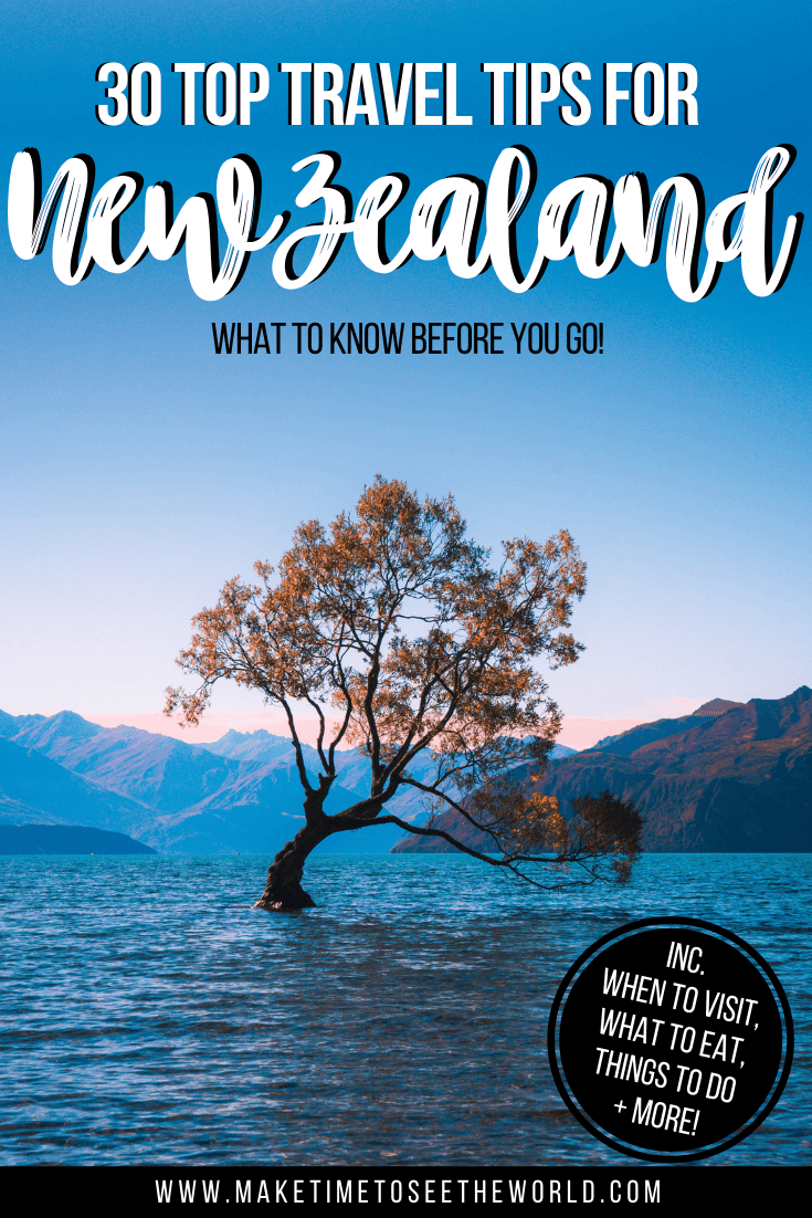 New Zealand Tips Pin Image featuring the Wanaka Tree under a clear blue sky surrounded by water
