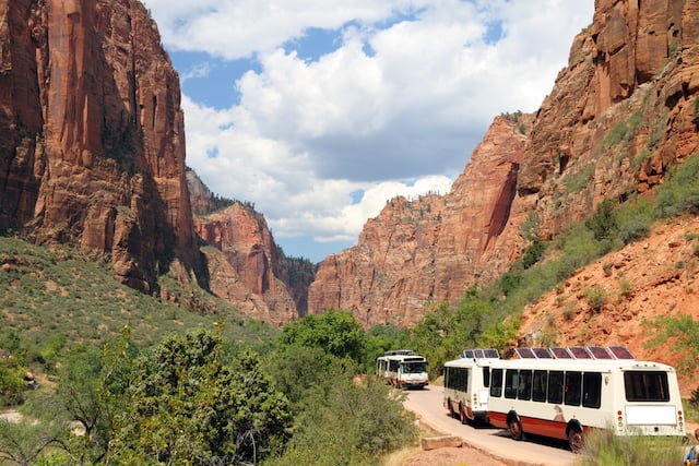 Two white and red shuttle buses corssing on the road in the canyon of Zion National Park