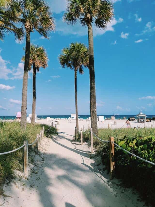 Walkway leading to the beach in Miami