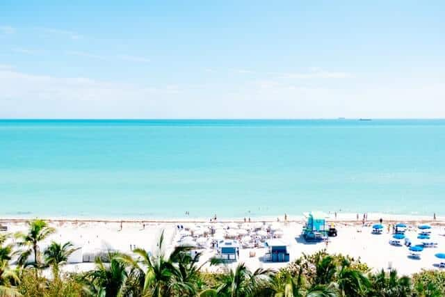 Fun things to do in Miami Florida cover photo of a white sand beach seen from over the top of a line of palm trees with the ocean behind it.