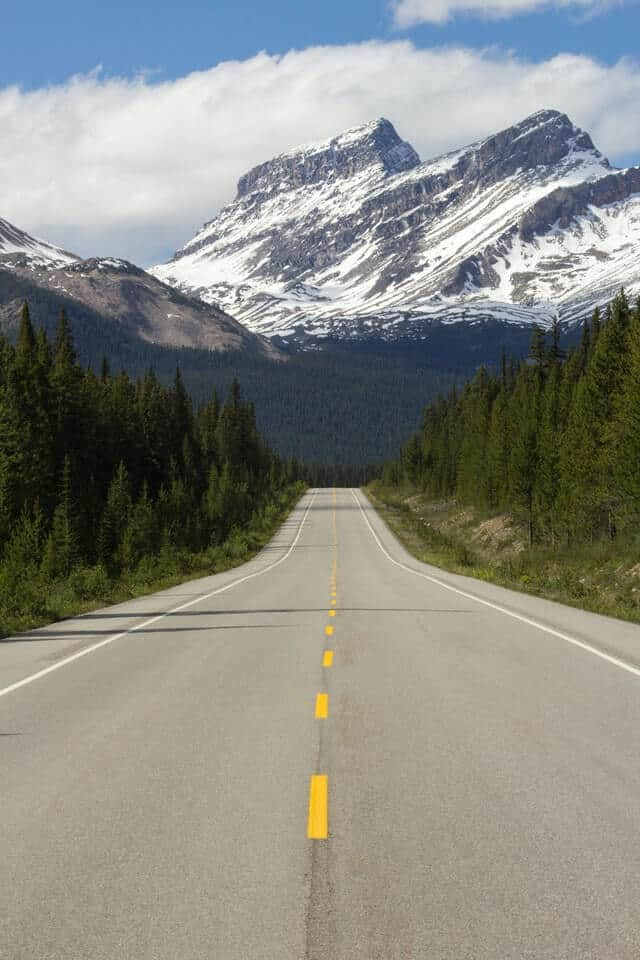Grey asphalt road flanked by green fir trees heading out into the snow capped mountains