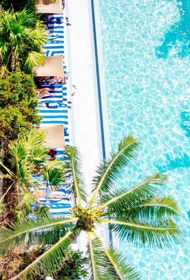 Top down shot of a luxury hotel pool surrounded by palm trees and day beds with blue and white striped covers