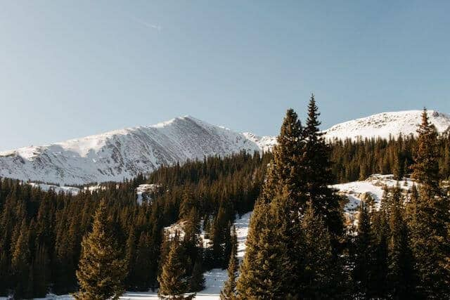 Colorado in Winter - snow covered mountains punctuated by green fir trees with the rocky mountains in the distance