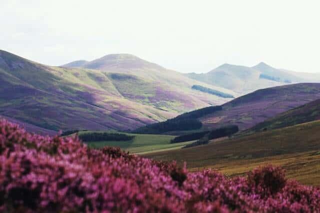 Pentalnd Hills Edinburgh