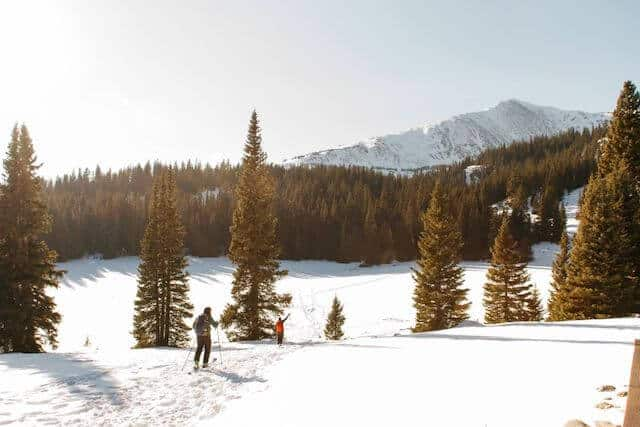 winter camping Colorado USA photo of a snow covered field with two people hiking through the snow between 2 fir trees heading towards the forrest in the distance